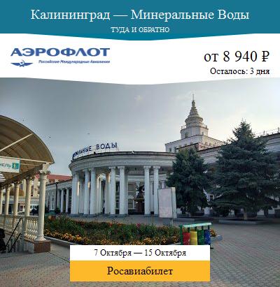 Дешёвый авиабилет Калининград — Минеральные Воды