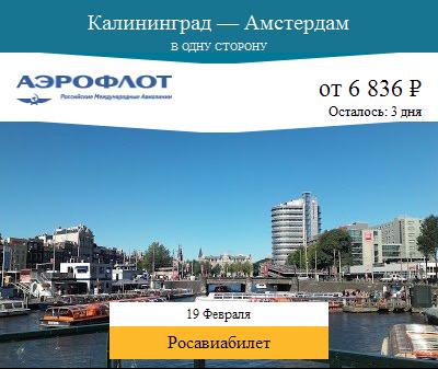 Дешёвый авиабилет Калининград — Амстердам